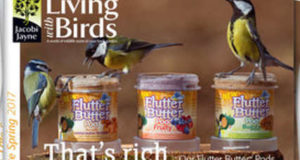 Living With Birds Booklet