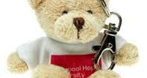 Toby Bear Keyring